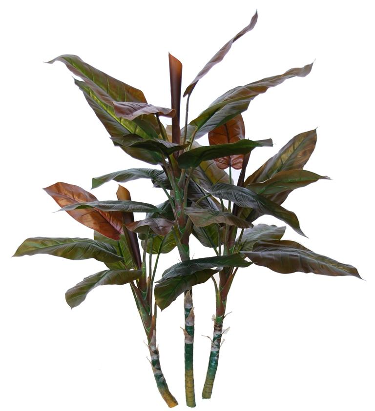 Cordyline Plant 100 cm Green Red