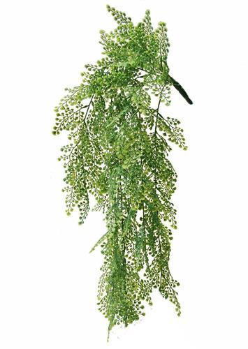 Adianthum Bush 60 cm Green