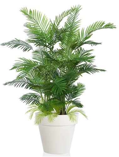 Areca Lux 190 cm Green