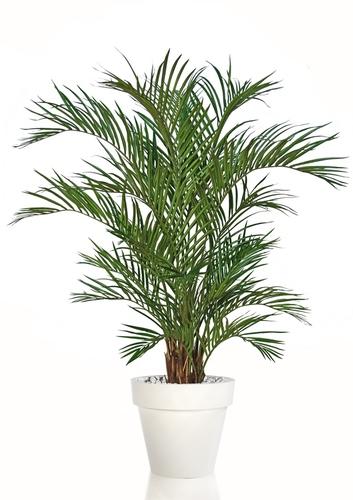 Areca w pot 170 cm Green