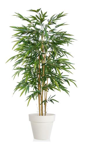 Bamboo Arrang   180 cm Green