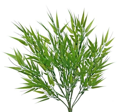 Bamboo Mini Bush 35 cm Green