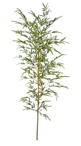 Bamboo Single Tree 200 cm