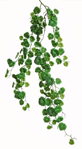 Begonia Bush 150 cm Green
