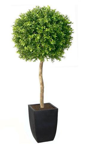 Bosso a sfera 3D con tronco naturale_120_cm