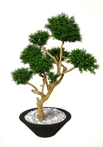 Boxwood_Crown_160_cm_Green