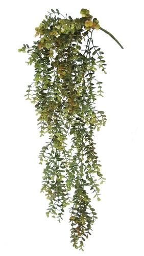 Boxwood Hanging 70 cm Green