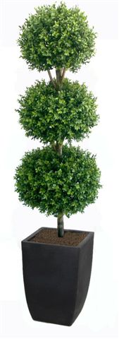 Boxwood_Triple_Ball_Tree_210_cm_green_V_4491A01