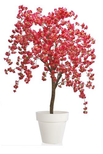 Cherry Wild Tree 150 cm Pink