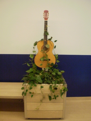 Guitar potted/bench with philodendron_ musical studio