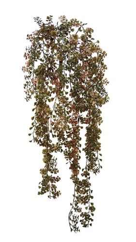 Clover Grass 70 cm Autumn