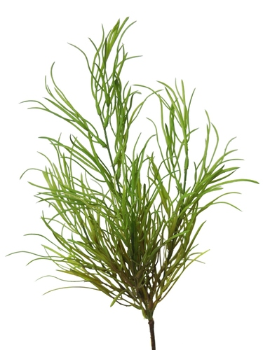 Coral Grass 45 cm Green