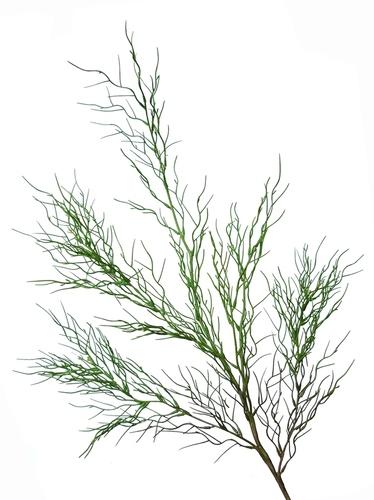 Coral Grass 85 cm Green