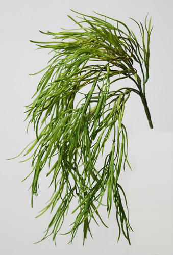 Coral Grass Hanging 45 cm Green