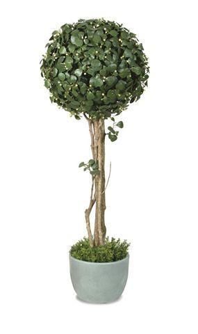 F._Deltoidea_Topiary_Ø_50_cm__H._180_cm_Green_Cream_V_400A07[5]