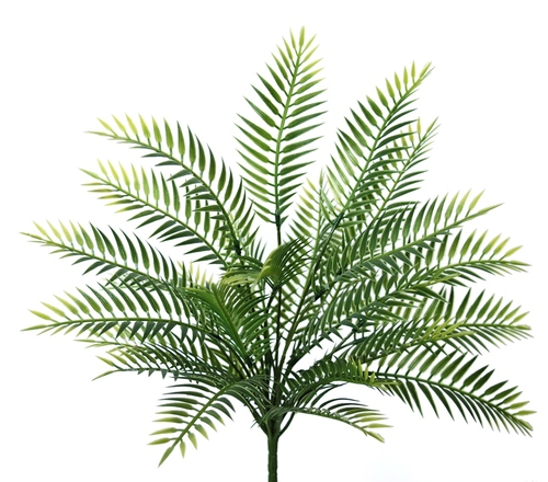 Fern Eden Bush 34 cm Green