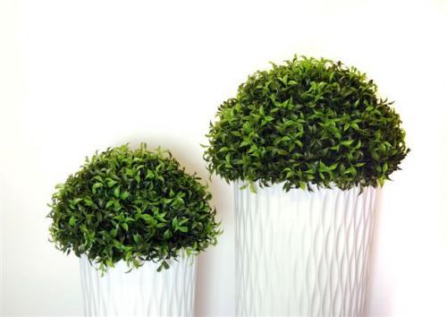 Ficus_Mini_Semi_Sphere_d_45_55_cm_4523GRN_4524GRN_(3)