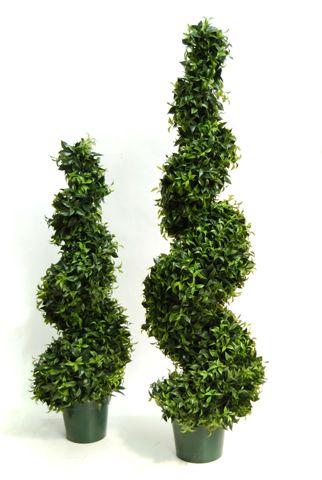 Ficus_Mini_Spiral_125_165_cm_4525GRN-4526GRN