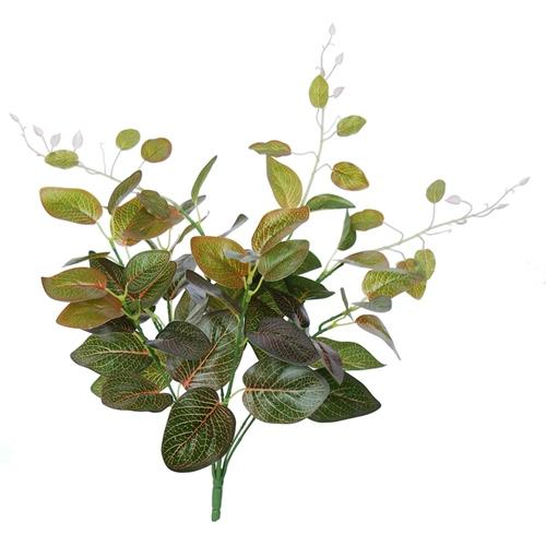 Fittonia Bush 48 cm Green Red