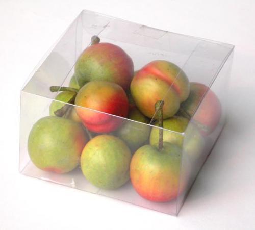 Fruit_Box_Plum_10_x_10_Green_Red_4261_GBD