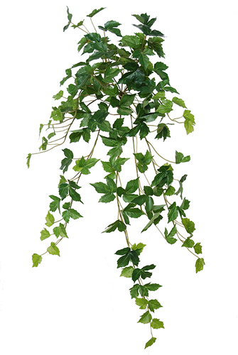 Grape Bush 50 cm Green 5453GRN