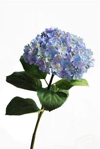 Hydrangea_70_cm_Blue_5285BLU