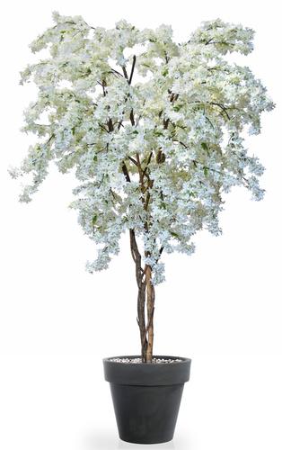 Jasmine Twisted Tree 240 cm White