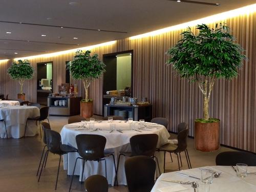Longifolia Riviera 260 cm Green