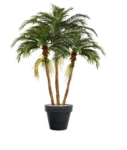 Majesty_Florida_Palm_Set_x3__380_cm_Green_V1018003