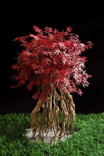 Maple_Root__Lux_140_cm_Burgundy