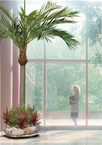 Phoenix_Palm_540_cm_Ø_320_cm_Green_4081GRN[2]