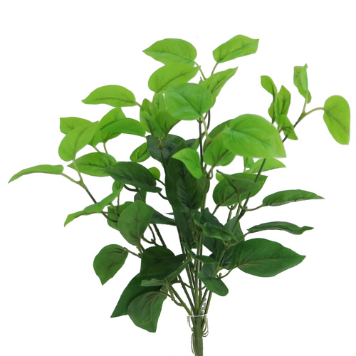 Pothos Bush 50 cm Green 5631GRN