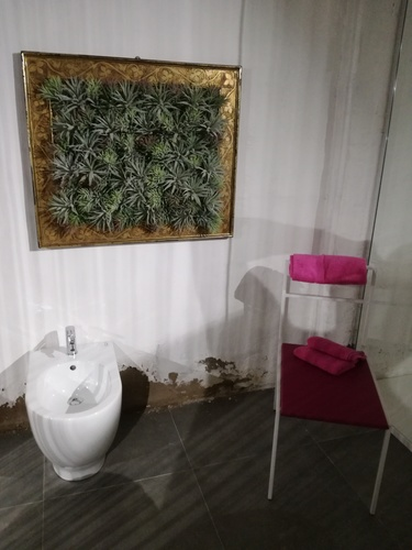 quadro con tillandsie artificiali BY PASSIONECREATIVA