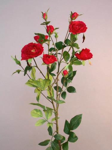 Rose_Delight_100_cm_Red_4281RED[1]