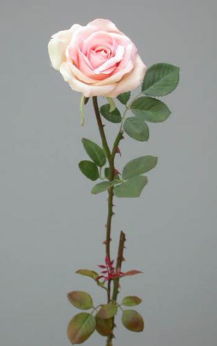 Rose_Tender_Medium_60_cm_Lt_Pink_4012LTP