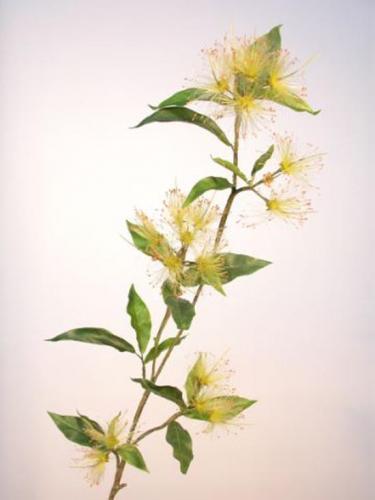 Tuffy_Flower_Stem_105_cm_Lt_Green_4432LTG