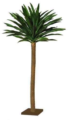 Yucca Gloriosa 270 cm Green