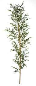 https://www.passionecreativa.it/data/upload/small/bamboo-single-tree-240-cm-5489grn.jpg