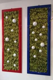 Coppia quadri licheni stabilizzati con sfere laccate by Passionecreativa Green Design Studio