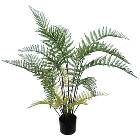 Fern Tree w pot 100 cm Green