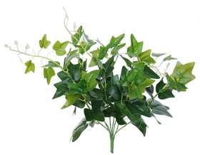 Ivy Bush 48 cm Green