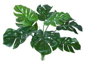 https://www.passionecreativa.it/data/upload/small/philodendron-bush-60-cm-green-5552grn.jpg