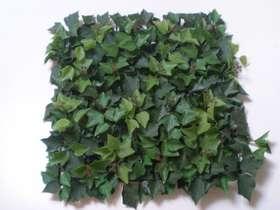 Verde 50x50 cm