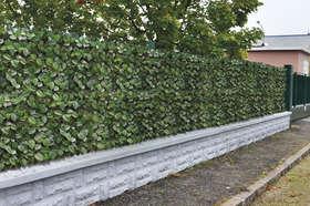 siepe gelsomino ambientazione recinzione esterna