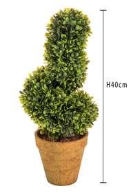 spirale bosso h 40 cm dettaglio