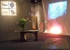 Tavolo con pianta PACHIRA