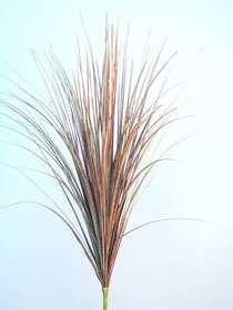 Tuft_Grass_90_cm_Brown_Cream_4125BCR