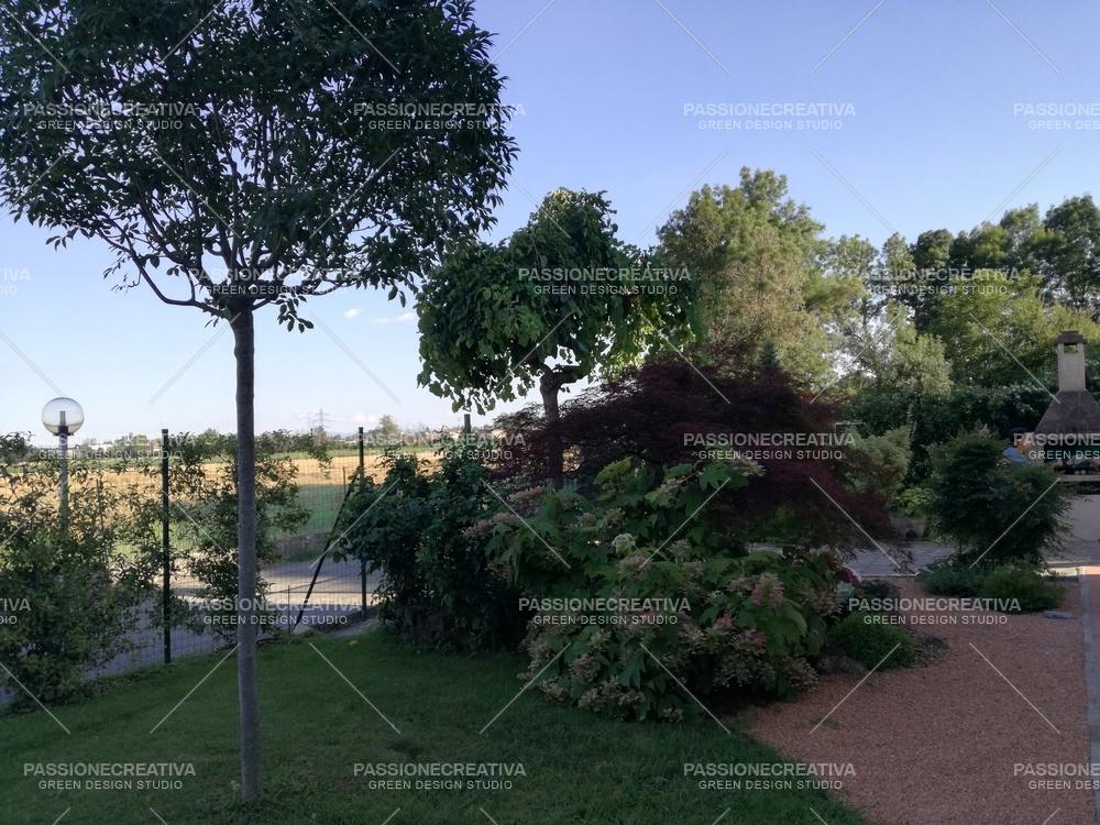 Giardino Barbara 2