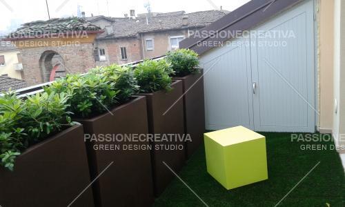 Tobira_nana_in_terrazzo_con_vaso_ruggine